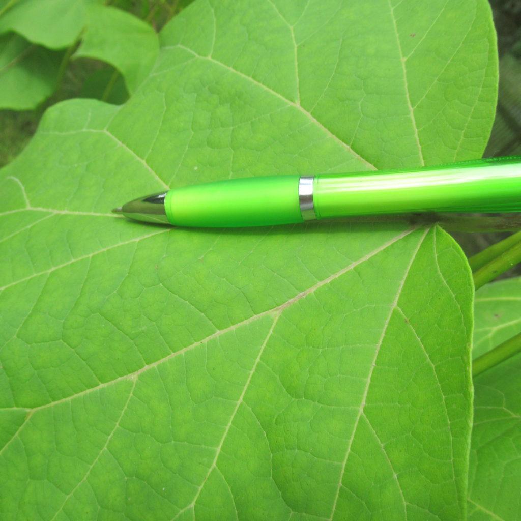 Kugelschreiber auf Blatt